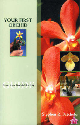 Picture of Your First Orchid