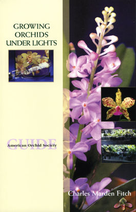 Picture of Growing Orchids Under Lights