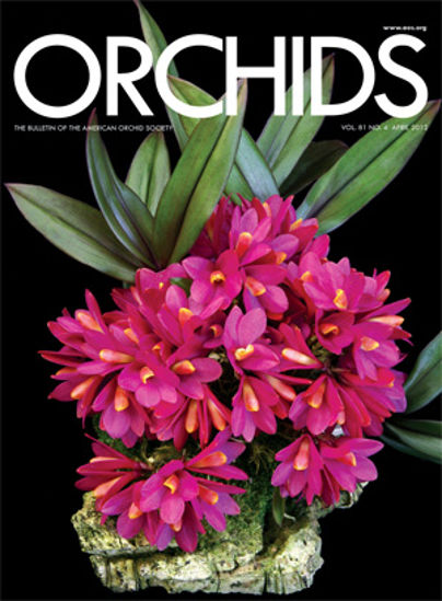 Picture of 2012/04 April ORCHIDS Magazine