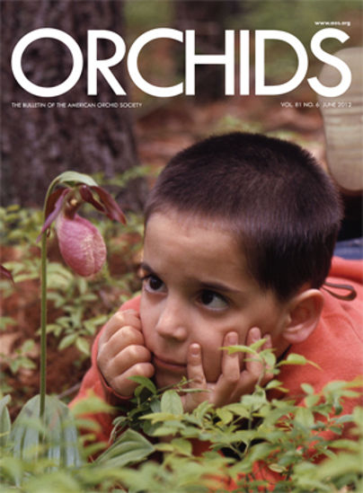Picture of 2012/06 June ORCHIDS Magazine