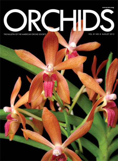 Picture of 2012/08 August ORCHIDS Magazine