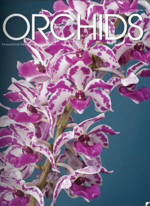 Picture of 2015/02 February ORCHIDS Magazine