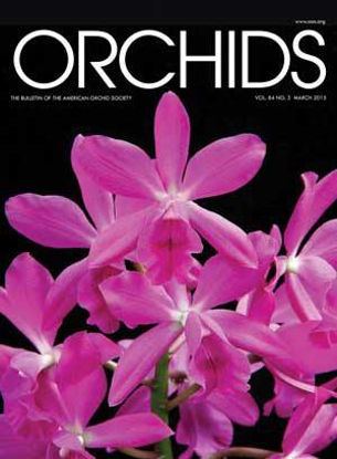 Picture of 2015/03 March ORCHIDS Magazine