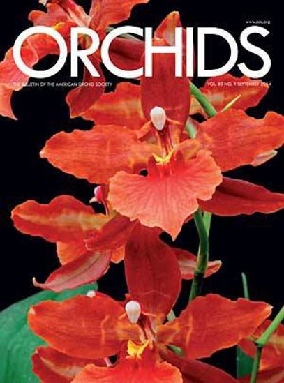 Picture of 2014/09 September ORCHIDS Magazine