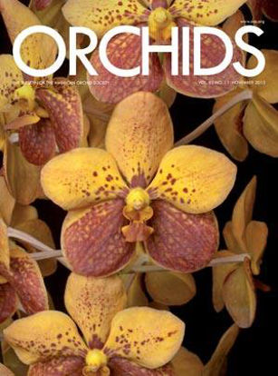 Picture of 2013/11 November ORCHIDS Magazine