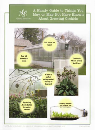 Picture of 2015/11 A Handy Guide to Things You May or May Not Have Known About Growing Orchids Supplement