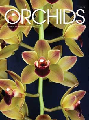 Picture of 2016/03 March ORCHIDS Magazine