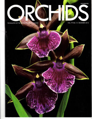 Picture of 2010/12 December ORCHIDS Magazine