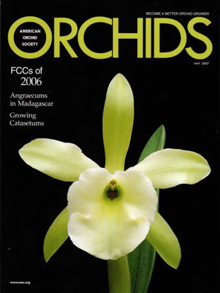 Picture of 2007/05 May ORCHIDS Magazine