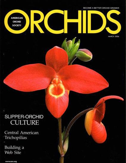 Picture of 2006/03 March ORCHIDS Magazine