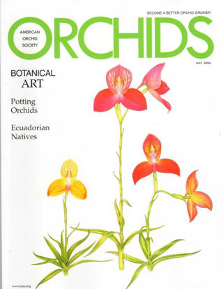 Picture of 2006/05 May ORCHIDS Magazine