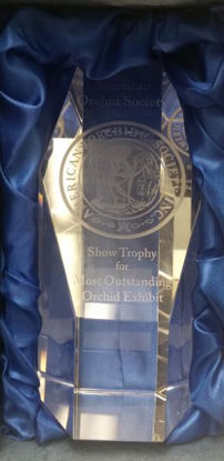 Picture of Show Trophy Payment