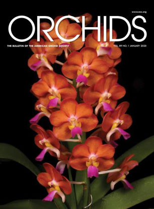 Picture of 2020/01 January ORCHIDS Magazine