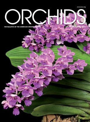 Picture of 2020/04 April ORCHIDS Magazine
