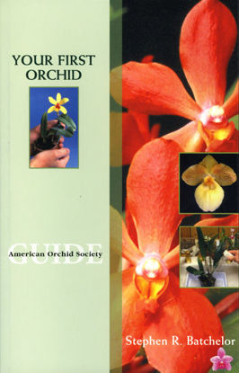 Picture of Your First Orchid - New Member Special