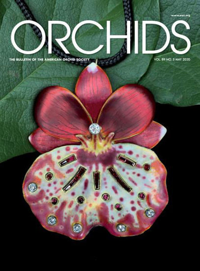 Picture of Replacement ORCHIDS Magazine
