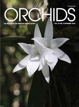 Picture of 2020/09 September ORCHIDS Magazine