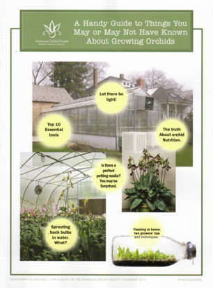 Picture of 2015/11 A Handy Guide to Things You May or May Not Have Known About Growing Orchids Supplement - Office Only