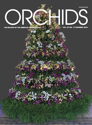 Picture of 2020/12 December ORCHIDS Magazine